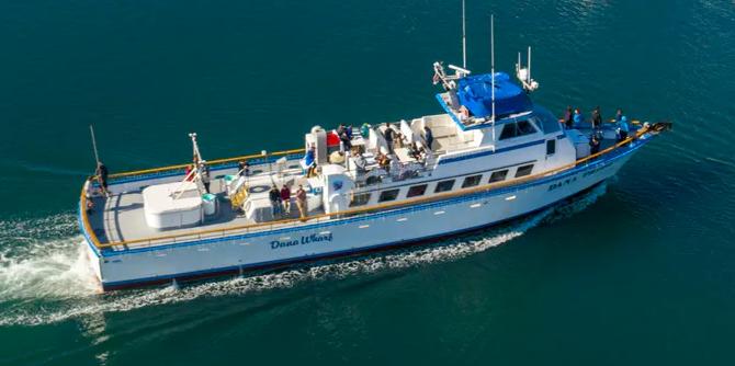 Dana pride boat